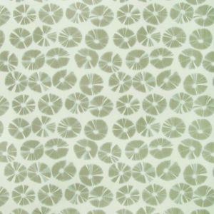 ECHINO-16 ECHINO Fawn Kravet Fabric