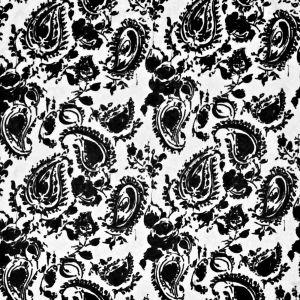 LCF67978F CATALINA PAISLEY Onyx Ralph Lauren Fabric