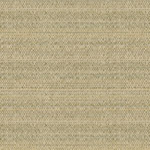 31805-116 SKIFF Dew Kravet Fabric