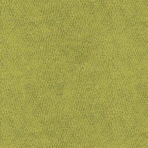 31871-3 BACI Grove Kravet Fabric