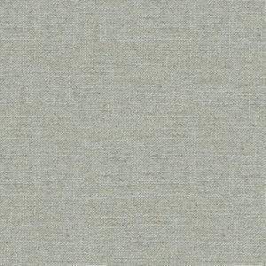 34196-1115 ALENA Vapor Kravet Fabric