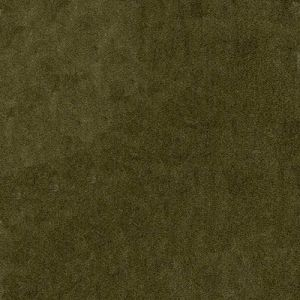 AM100111-106 PELHAM Taupe Kravet Fabric