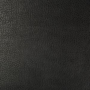 BEHOLDER-8 Kravet Fabric