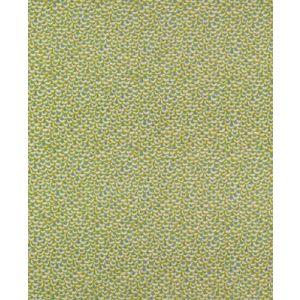 BR-79766-425 FAN FAIR COTTON PRINT Lime Aqua Brunschwig & Fils Fabric