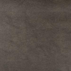 DUST-21 Kravet Fabric