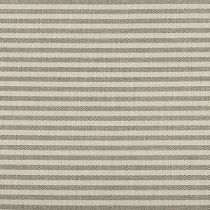 GWF-3745-111 RAYAS STRIPE Fossil Groundworks Fabric