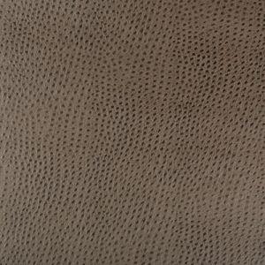 HUBBLE-106 Kravet Fabric