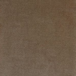SPARTA-106 Kravet Fabric