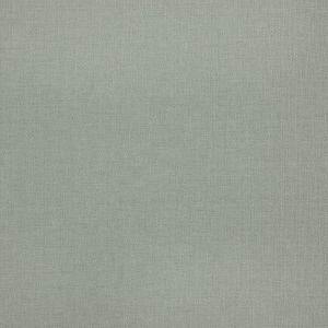 BEVA-6 BEVAN 6 Seafoam Stout Fabric
