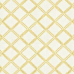 ROTTERDAM 6 Buttersc Stout Fabric
