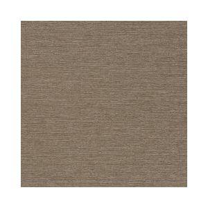 SERENE SLUB Truffle Robert Allen Fabric