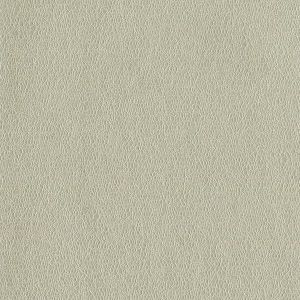 MCO2102 SPRITZ Desert Winfield Thybony Wallpaper