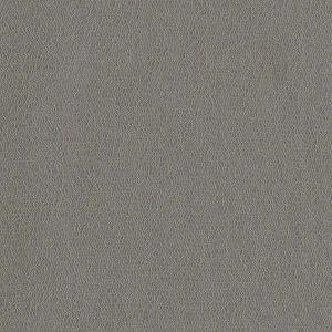 MCO2105 SPRITZ Ash Winfield Thybony Wallpaper