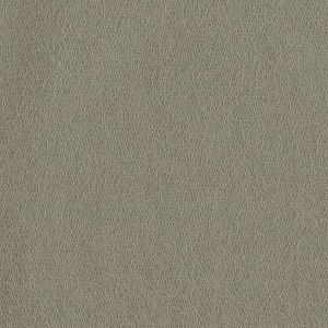 MCO2106 SPIRITZ Trench Winfield Thybony Wallpaper