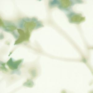 MCO2150 LIVING WELL SERENITY Spring Winfield Thybony Wallpaper