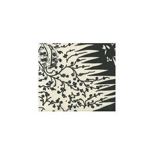302666F LES INDIENNES Black on Tint Quadrille Fabric