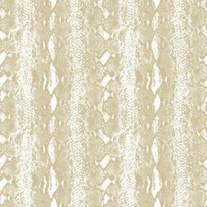RMK10693WP Snake Skin Wall Appliques York Wallpaper