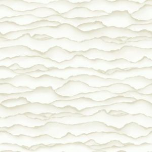 RMK10694WP Singed Wall Appliques York Wallpaper