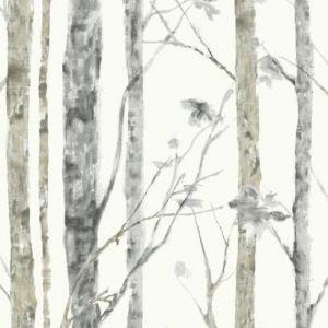 RMK9047WP Trees Wall Appliques York Wallpaper