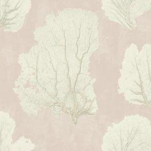 VA1210 Coral Couture York Wallpaper