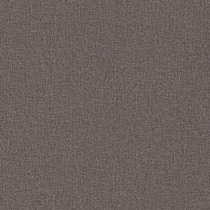 COD0535N Sweet Birch York Wallpaper