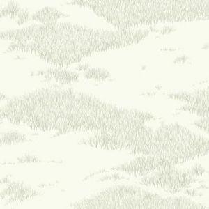 NR1500 Tundra Scenic York Wallpaper