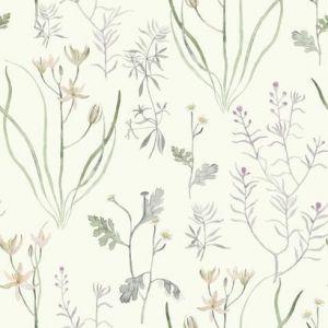 NR1564 Alpine Botanical York Wallpaper