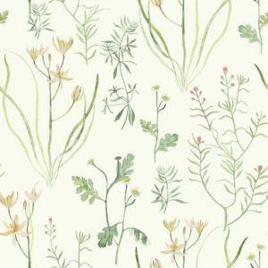 NR1565 Alpine Botanical York Wallpaper