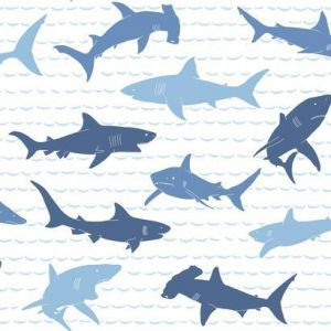 KI0566 Shark Charades York Wallpaper