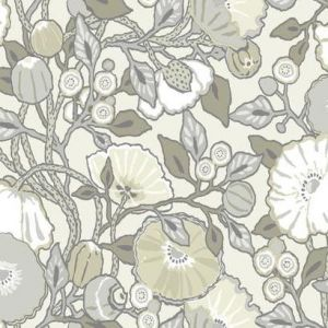 CY1519 Vincent Poppies York Wallpaper