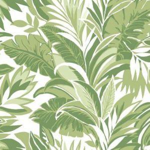 CY1565 Palm Silhouette York Wallpaper
