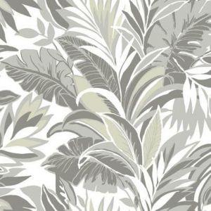 CY1566 Palm Silhouette York Wallpaper