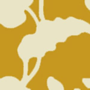 AP804B-05 POTALLA BACKGROUND Inca Gold On Off White Quadrille Wallpaper