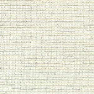 WNM 0013META METALLICA GRASSCLOTH Wet Plaster Scalamandre Wallpaper