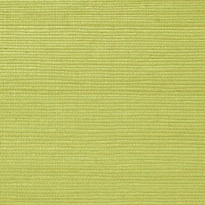 WNM 0068META METALLICA GRASSCLOTH Fennel Seed Scalamandre Wallpaper
