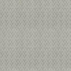 04728 Platinum Trend Fabric