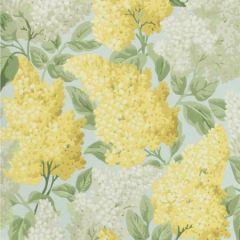 115/1003-CS LILAC Lemon Olive Prime Blue Cole & Son Wallpaper