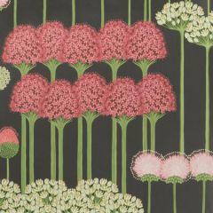 115/12037-CS ALLIUM Coral Light Green Charcoal Cole & Son Wallpaper