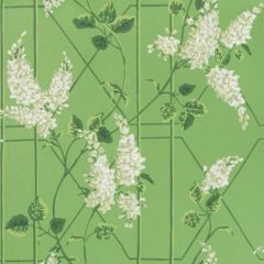 115/5016-CS WISTERIA Sage Leaf Green Cole & Son Wallpaper