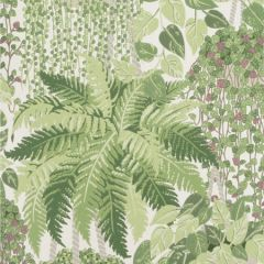 115/7021-CS FERN Leaf Green And Olive Cole & Son Wallpaper