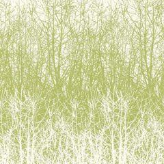 2707242 BIRCHES Leaf White Schumacher Wallpaper