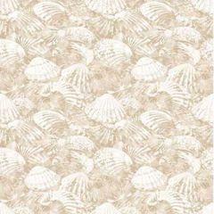 2904-25690 Surfside Shells Beige Brewster Wallpaper