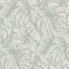 2964-87343 Balboa Botanical Olive Brewster Wallpaper