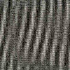 34855-21 JINX Charcoal Kravet Fabric