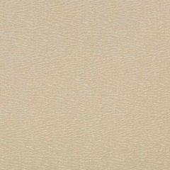 35737-116 Kravet Fabric