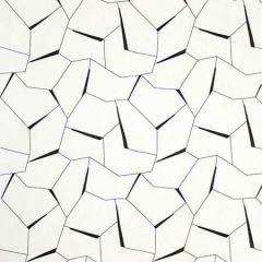 35878-81 DIVERGING Ebony Kravet Fabric