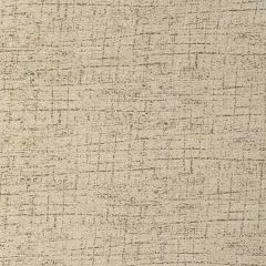 35890-16 WARP WEFT Canyon Kravet Fabric