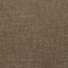 35904-16 PASARO Vicuna Kravet Fabric