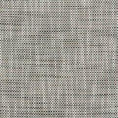 36082-81 Kravet Fabric