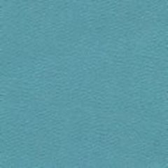 6200-06 SUNCLOTH CANVAS Turquoise Quadrille Fabric